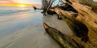 Shutterstock 787471906