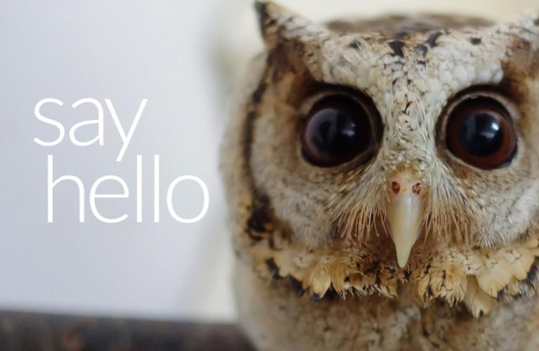 Hellom