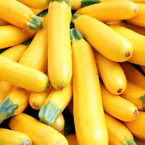 Yellow Courgette2