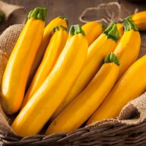 Yellow Courgette3