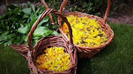 Baskets With Dandelion